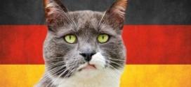 116 неправильных глаголов в немецком