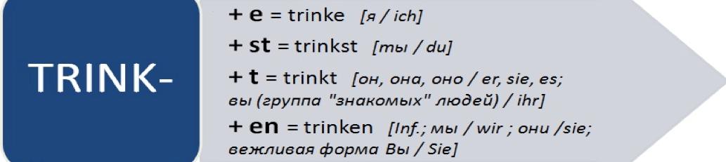 глагол trinken